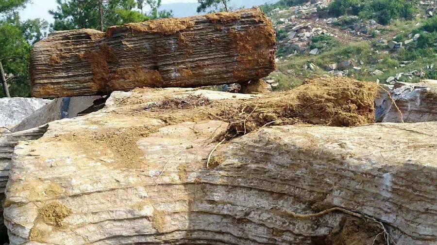 千层石如何设计假山?