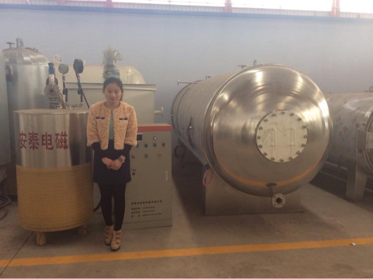 电磁蒸汽锅炉大型生产厂家 诸城安泰机械 专业供应质量保证